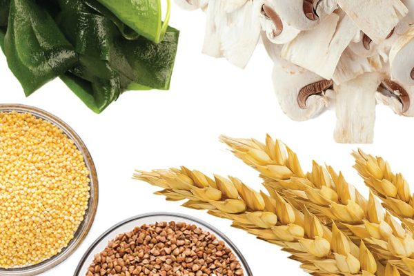 How does beta-glucan benefit the immune system?